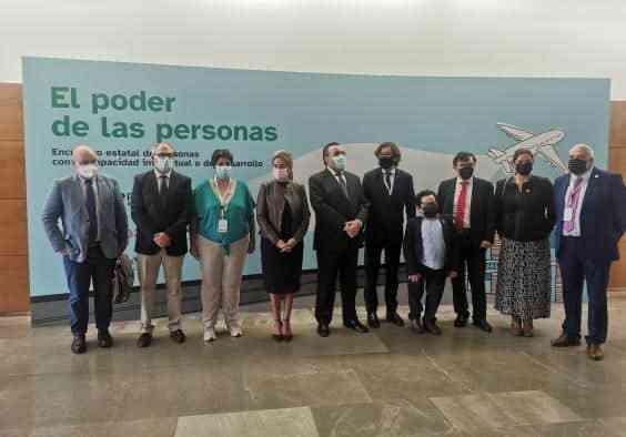 Apoyo a Plena Inclusión en la creación de la Plataforma Estatal de personas con Discapacidad Intelectual o del Desarrollo